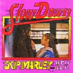 "Listen To Skip Marley & H.E.R Collaboration on ""Slow Down"""